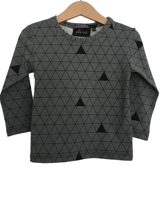 grijze driehoek ls 1