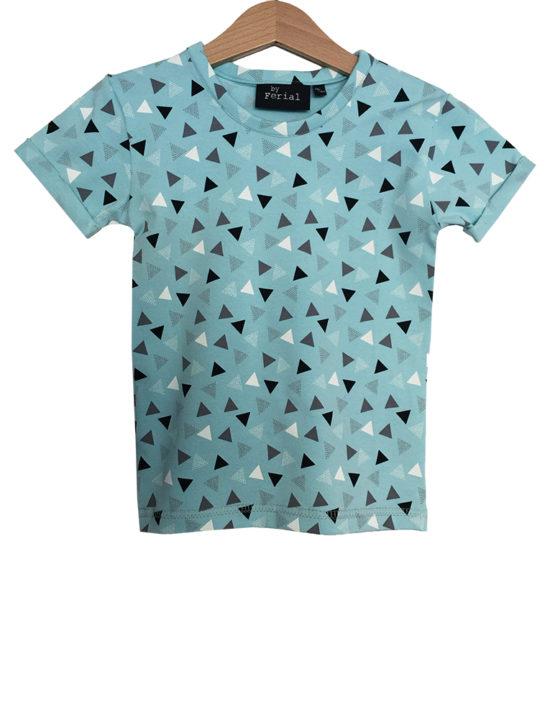 blauwe driehoekjes1
