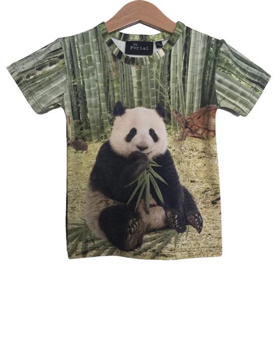 panda 2e variatie