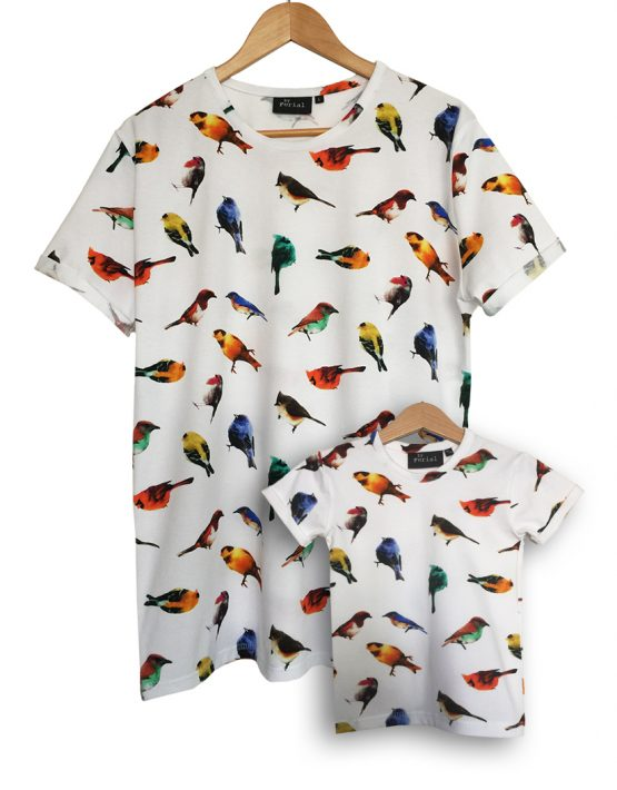 colorful birds set